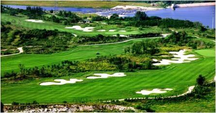 青岛国际高尔夫俱乐部伟德国际平台官网首页